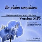 en_pleine_conscience_Vmp3