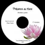 presence_hara