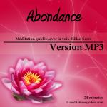 abondance_Vmp3