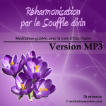 reharmonisation_souffle_divin_Vmp3