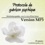 protocole_guerison_psychique_Vmp3