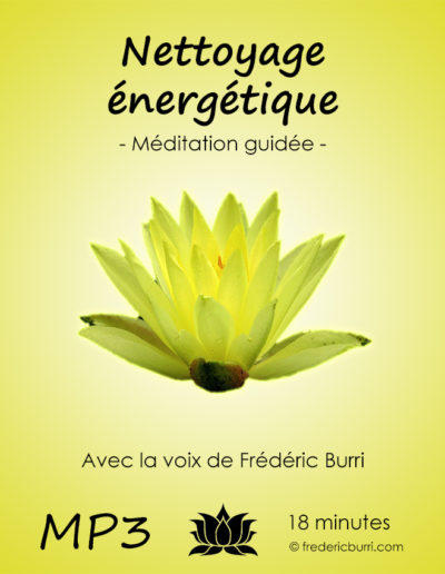 nettoyage_energetique_Vmp3