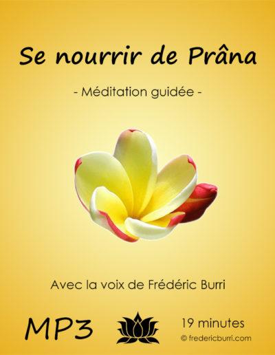Se_nourrir_de_prana_Vmp3