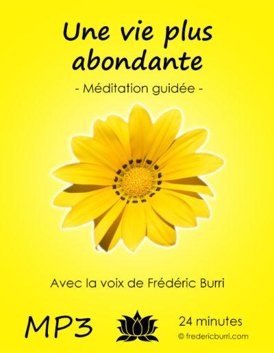 vie_plus_abondante_Vmp3